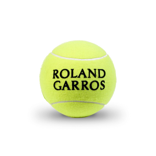 Palline da tennis Wilson_Roland Garros_All Court