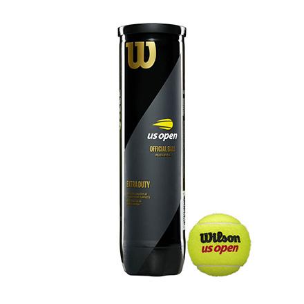 Palline da tennis Wilson US Open